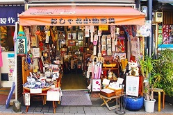 Yanaka Cat Town Image by Sharon Ang from Pixabay